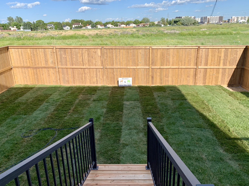 Missing fence image