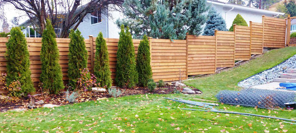 Wood fence 3